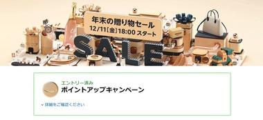 SnapCrab_NoName_2020-12-11_17-18-27_No-00