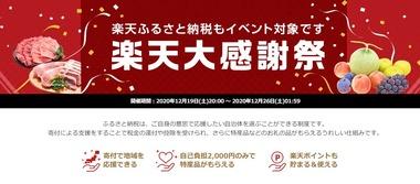 SnapCrab_NoName_2020-12-25_15-29-59_No-00